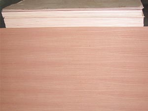 Sapeli Plywood