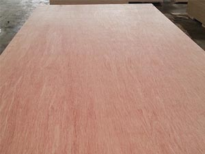 Bintangor plywood